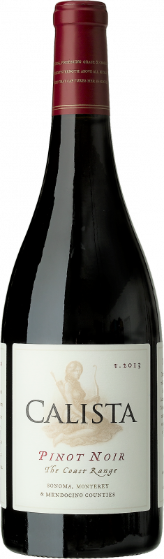 The Coast Range Pinot Noir 2013 fra Calista fra Californien, USA